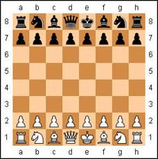 Шахматы (правила, видео)