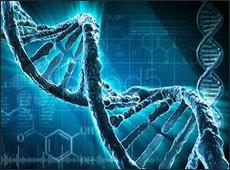 ДНК нима дегани? (видео)