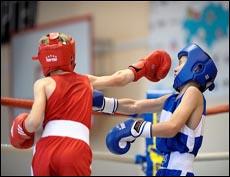 Будут созданы школы высшего спортивного мастерства по боксу