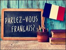 Вопросы олимпиады по французскому языку (2021)
