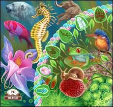 Онлайн тест по биологии